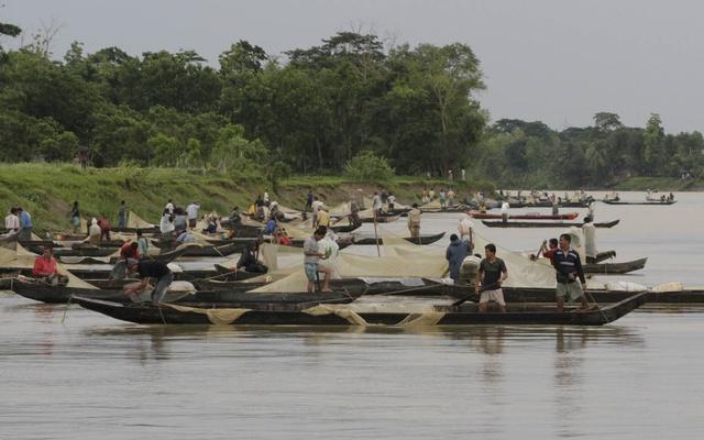 মাছের খনি : হালদা নদী
